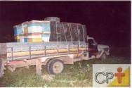 Apicultura migratória: as colmeias móveis