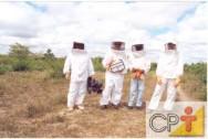 Apicultura migratória: vestimenta do apicultor