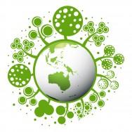 Código Florestal Brasileiro - Disposições Gerais
