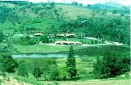 Código Florestal Brasileiro - Das Áreas de Uso Restrito