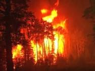 Código Florestal Brasileiro – Da Proibição do Uso de Fogo e do Controle dos Incêndios