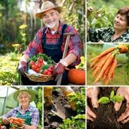 Código Florestal Brasileiro – Da Agricultura Familiar