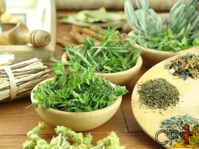 Horta - condimentos e hortaliças livres de agrotóxicos em pequenos espaços   Artigos Cursos CPT