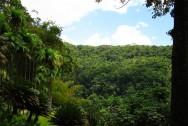 A Reserva Legal tem a função de assegurar o uso sustentável dos recursos naturais.