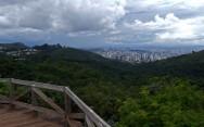 Novo Código Florestal Brasileiro - Área verde urbana