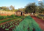 Considera-se pequena propriedade ou posse rural familiar aquela explorada mediante o trabalho pessoal do agricultor familiar e empreendedor familiar rural.