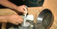 Inseminação artificial em gado de leite - biotecnologia aplicada na reprodução animal
