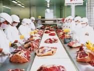 Aprenda Fácil Editora: Holanda rejeita importação de carne brasileira