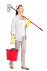 O Portal Cursos CPT disponibiliza a cartilha do trabalhador doméstico, do Ministério do Trabalho e Emprego, com perguntas e respostas