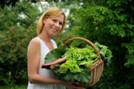 Horta - vegetais cultivados em pequena quantidade para o consumo próprio