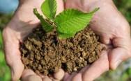 É possível transformar um problema ambiental em benefício econômico e social para o Brasil.