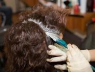 Coloração dos cabelos femininos - como corrigir erros de coloração