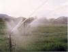Irrigação de pastagens e fertirrigação é união com vantagens de sobra