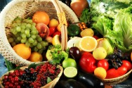Calendário Agrícola - ferramenta de trabalho do produtor rural