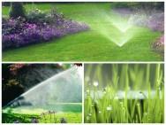Irrigação do  jardim mantém a beleza das plantas o ano todo