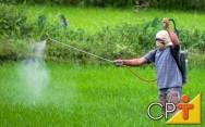 Fruticultura: vantagens dos defensivos alternativos