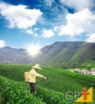 Os agrotóxicos oferecem grandes riscos à saúde humana.