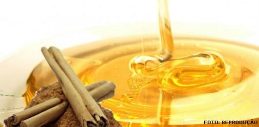 Abelhas - o mercado do mel no Brasil