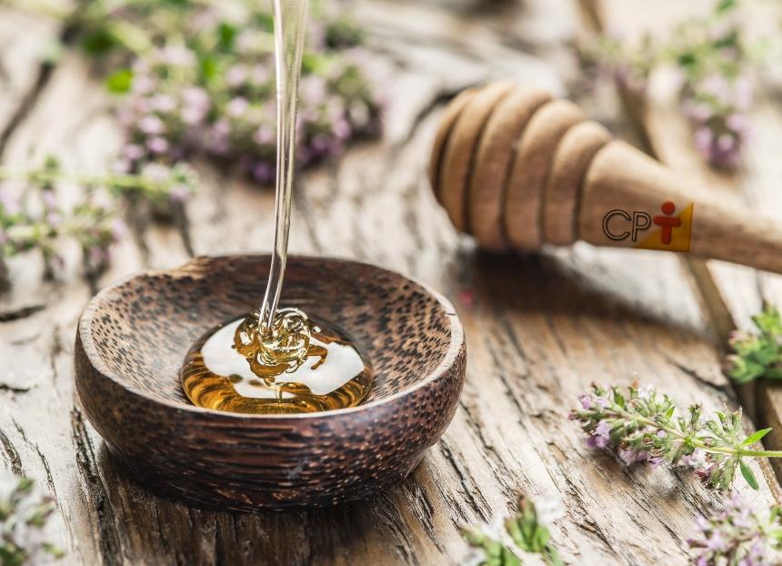 Abelhas sem ferrão - mel com baixo teor de açúcar e ação antibacteriana   CPT