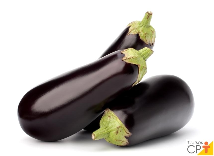 Horta: como plantar Berinjela (Solanum melongena)   Artigos CPT