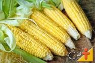 Processamento de Milho Verde: o milho
