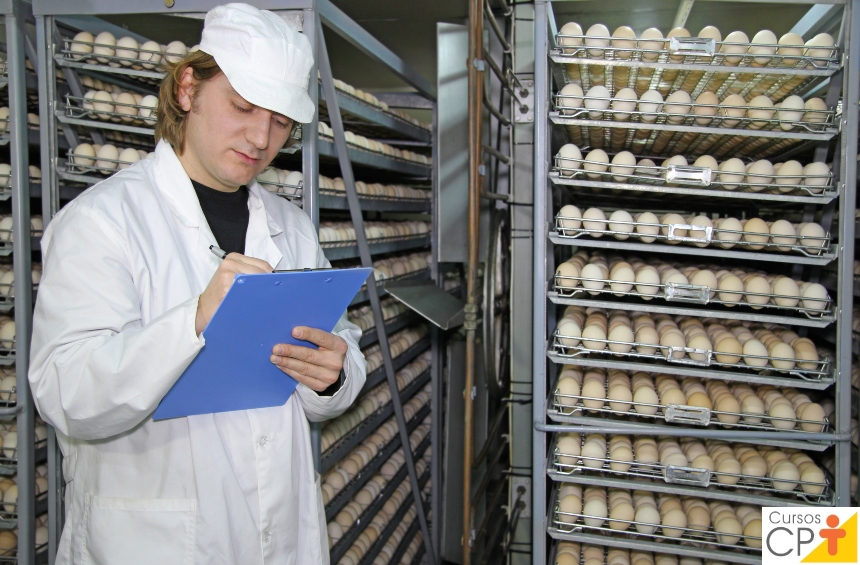 Planilha de controle: produção de ovos caipiras   Artigos CPT
