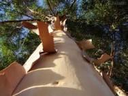 Aprenda Fácil Editora: Eucalipto: saiba escolher a espécie quanto ao uso