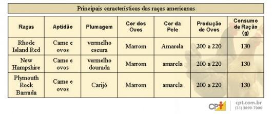 Frango e Galinha Caipira - Raças Americanas