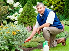 Curso Profissionalizante de Jardineiro