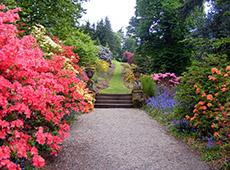 Curso Como Montar uma Empresa de Manutenção de Jardins