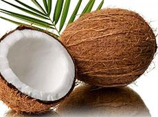 Curso Industrialização do Coco - Processo Artesanal