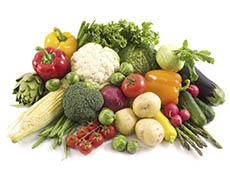 Cultivo Orgânico de Hortaliças - Sistema de Produção