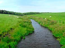 Tratamento de Água no Meio Rural