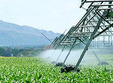Curso Aplicação de Fertilizantes e Defensivos Via Irrigação