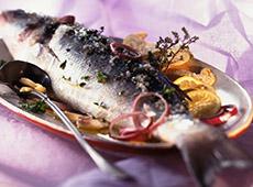 Processamento Artesanal de Pescado