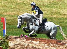 Provas Equestres de Velocidade