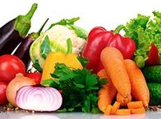 Curso Cultivo Orgânico de Tomate, Pimentão, Abóbora e Pepino