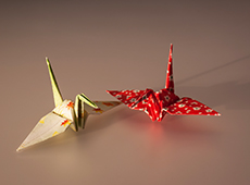 Origami - Arte da Dobradura de Papéis