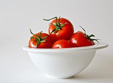 Produção de Tomate para Indústria