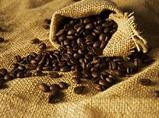 Como Montar e Operar uma Torrefadora de Café