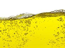 Curso Produção de Biodiesel na Fazenda