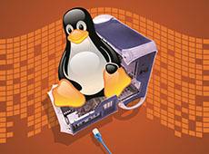 Curso Como Montar um Servidor Linux com Terminais Leves