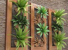 Jardins Verticais - Implantação e Manutenção