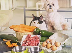 Alimentação Natural para Cães e Gatos - Específico para Tutores