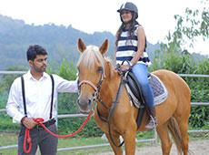 Curso Terapias com Cavalo - Equiterapia