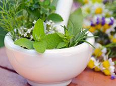 Curso Farmácia Viva - Princípios Ativos, Identificação e Utilização de Plantas Medicinais