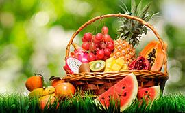 CPT Adubação Frutas e Flores - Software para Adubação de Custo Mínimo e Recomendação do Plantio à Colheita