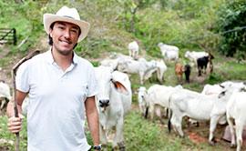 Software CPT: CPT Fazenda Agrícola e Pecuária - Software para Gerenciamento Financeiro e Econômico de Atividades Agrícolas e de Pecuária em Propriedades Rurais