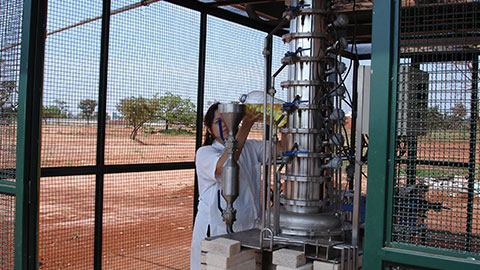 Produtor de Biodiesel