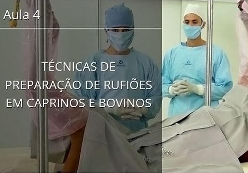 Cirurgia de Grandes Animais